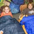 Denver Zoo kids sleepover activity