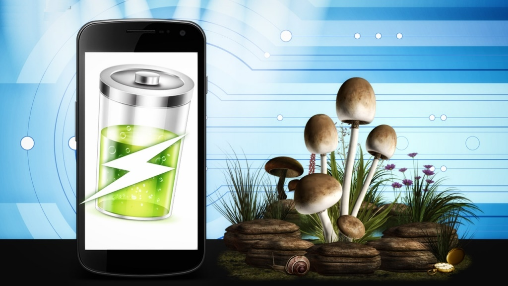Power Future Smart Phones with the Help of Mushroom