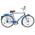 Global and China Bicycle Industry in 2016-2021
