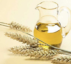 Wheat Germ Oil Market
