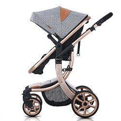 Global Baby Stroller and Pram Market