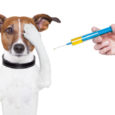 Veterinary Vaccine Market