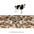 Feed Binders Market