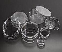 Petri Dish Market