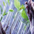 North America Bio-based Polyurethane Global Market