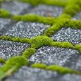 Green Cement and Concrete Market