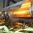 High-pressure Sodium Light