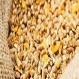 Veterinary Feed Additives Market