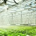 Greenhouse Irrigation Systems Market