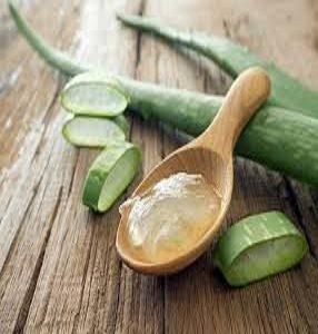 Aloe Vera Extracts Market