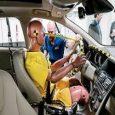 Automotive Crash Test Dummy Market