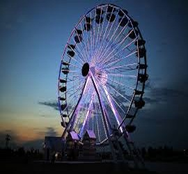 Ferris Wheel Market