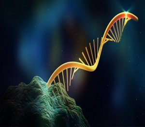 Pyrosequencing Market