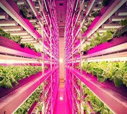 Horticultural LED Lighting Market